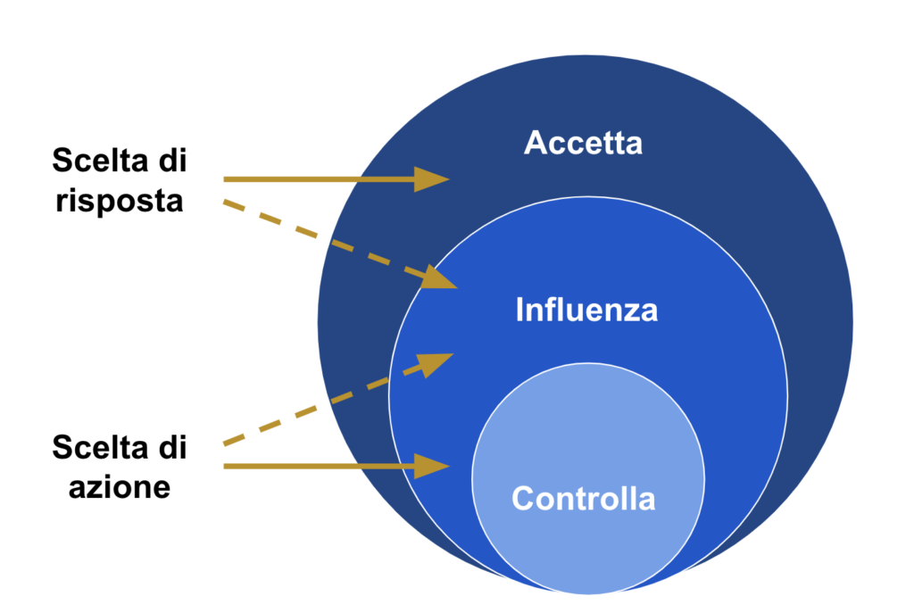CIA model Controllo, Influenza, Acctta